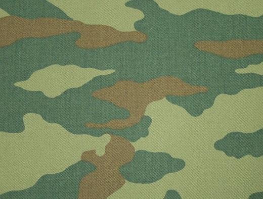Расцветка Камуфляжа Березка армейский 90х годов на фото