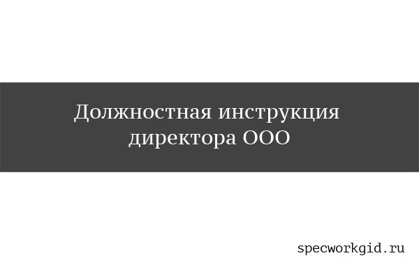 Должностная инструкция директора ООО
