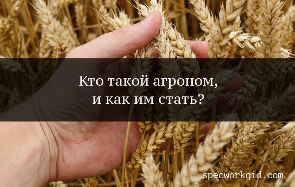 Агроном (профессия)
