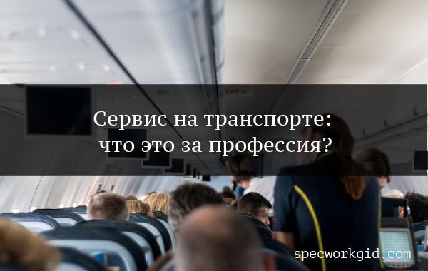 Сервис на транспорте – что за профессия?